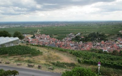 Sankt Martin (Pfalz) Treffen 2019 – Bilder für Mitglieder